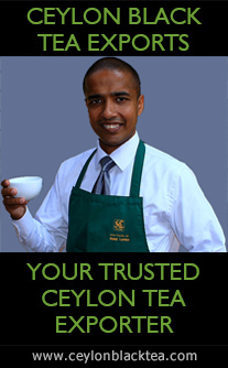 Ceylon Tea � Ceylon Tea Guide � Guide to Ceylon Tea � Guide to exporting tea from Sri Lanka � Sri Lanka Tea Information by Ceylon Black Tea Exports � Ceylon Tea Guide of reputed Tea Exporters in Sri Lanka � Ceylon Tea Exporters List � Ceylon Tea Exporters Guide � Sri Lanka Tea Exporters � Tea Exporters in Sri Lanka